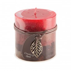 Charlton Home Cranberry Apple Scented Votive Candle DEIC2090
